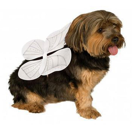 Angel Wings Dog Costume - White
