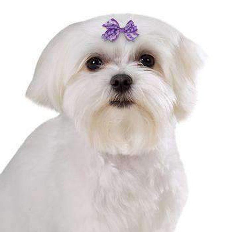 Aria Gracie Dog Bows, Pet Accessories, Furbabeez, [tag]