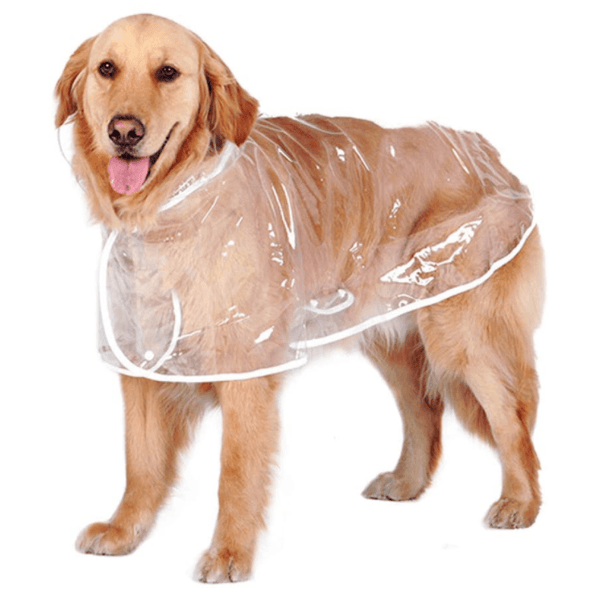 Big Dog Transparent Rain Poncho Pet Clothes Amazon