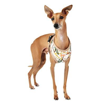 Botanical Dog Harness Collars and Leads Puppia