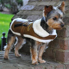 Brown and Black Faux Leather Bomber Dog Coat Harness + Leash Pet Clothes Doggie Design