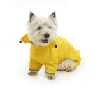 BUSTER Aqua Dog Raincoat Pet Clothes Kruuse