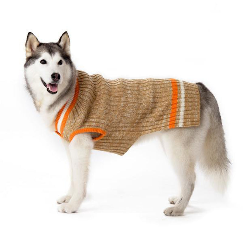 City V-Neck Dog Sweater by Dogo - Beige with Orange Trim, Pet Clothes, Furbabeez, [tag]