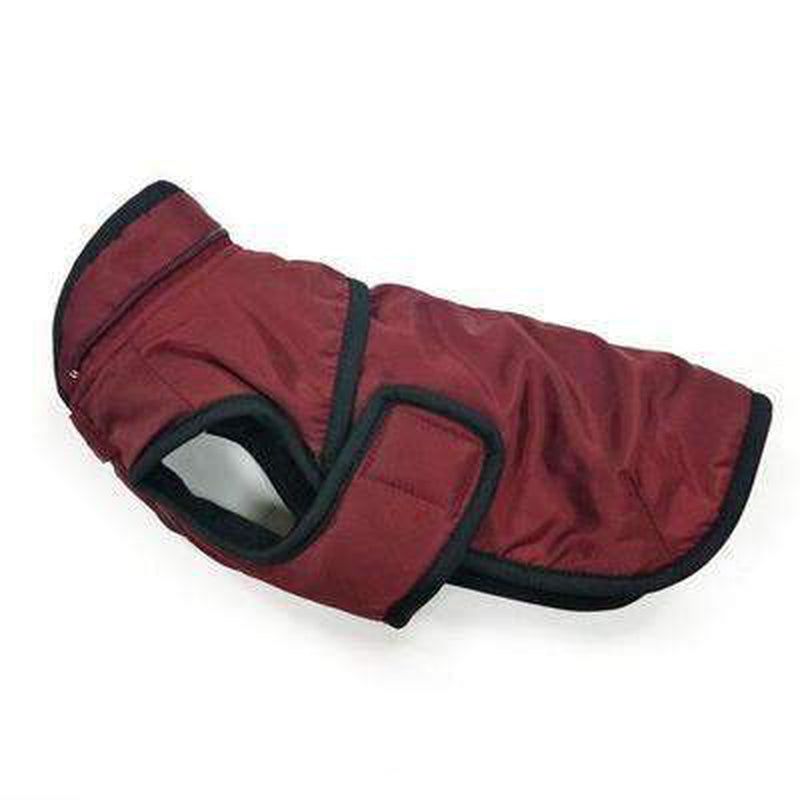 Classic Trench Dog Coat - Maroon, Pet Clothes, Furbabeez, [tag]