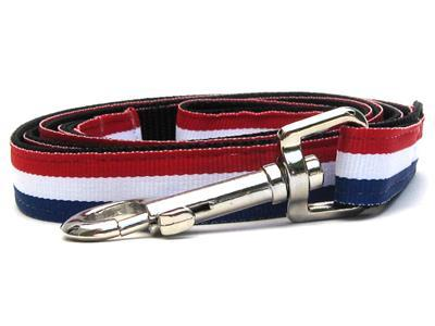 Custom Engraved Patriotic Pooch Nylon Dog Collar Collars and Leads Diva Dog