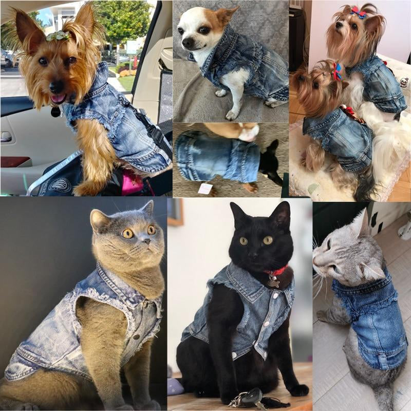 Denim Dog Vest, Pet Clothes, Furbabeez, [tag]