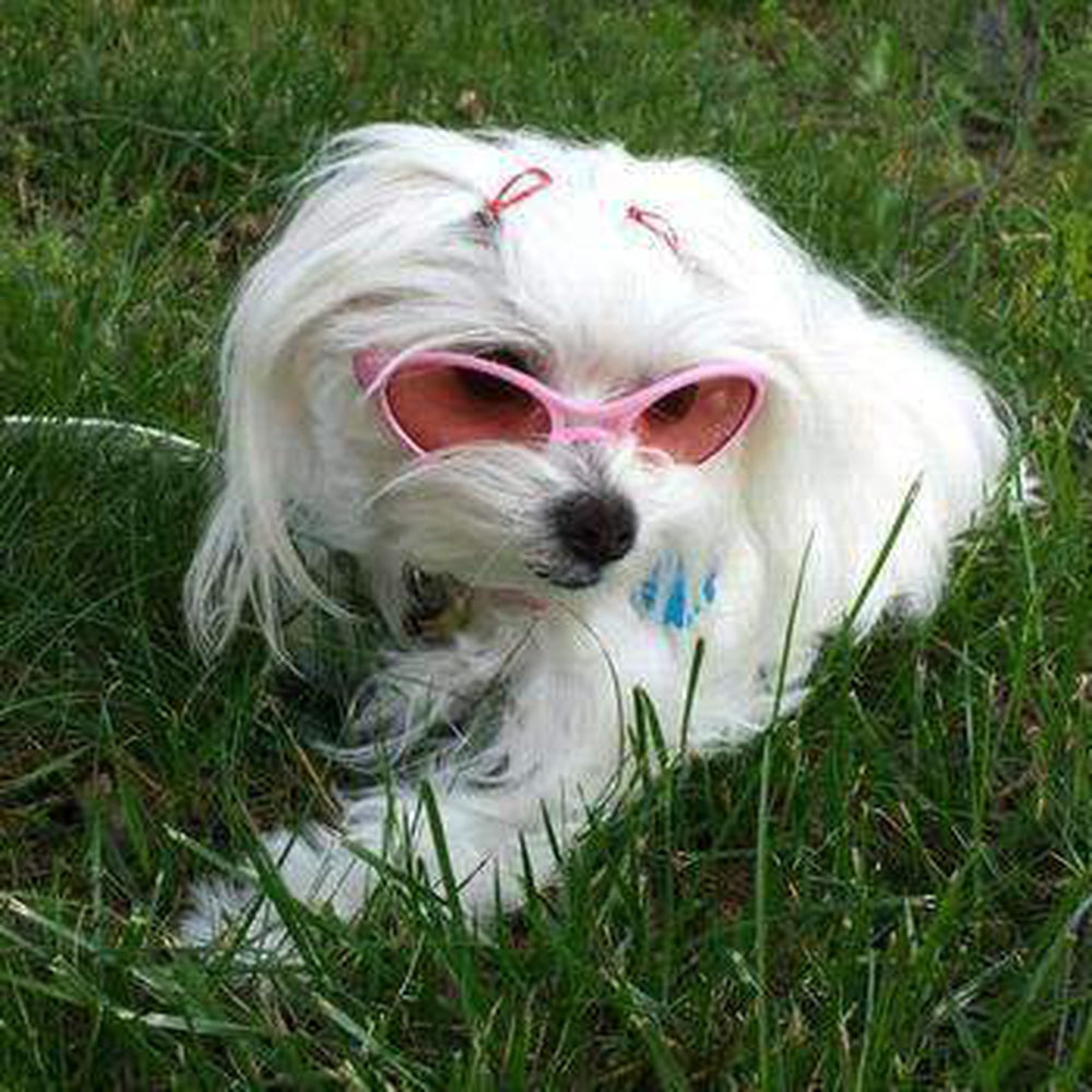 Doggles K9 Optix Rubber Sunglasses - Shiny Pink, Pet Accessories, Furbabeez, [tag]