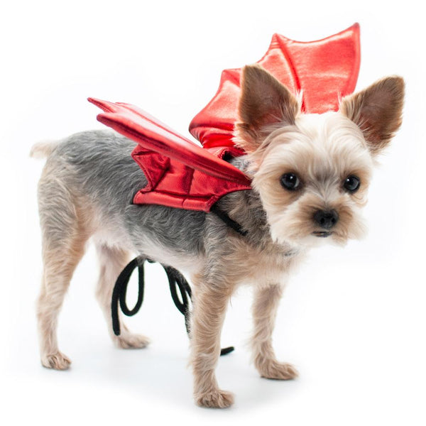 Dragon Wings Dog Costume, Pet Clothes, Furbabeez, [tag]