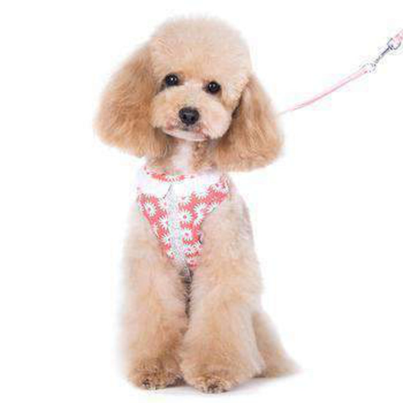 EasyGO Flower Bling Dog Harness by Dogo - Pink, Collars and Leads, Furbabeez, [tag]