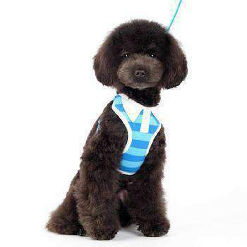 EasyGo Polo Stripe Dog Harness by Dogo - Blue, Collars and Leads, Furbabeez, [tag]