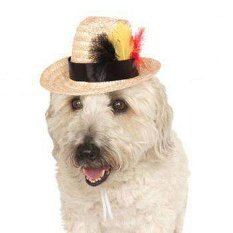Fedora Dog Hat with Feathers, Pet Accessories, Furbabeez, [tag]