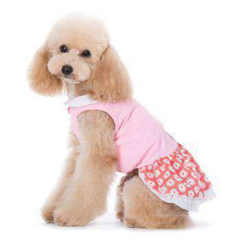 Flower Bling Dog Dress, Pet Clothes, Furbabeez, [tag]