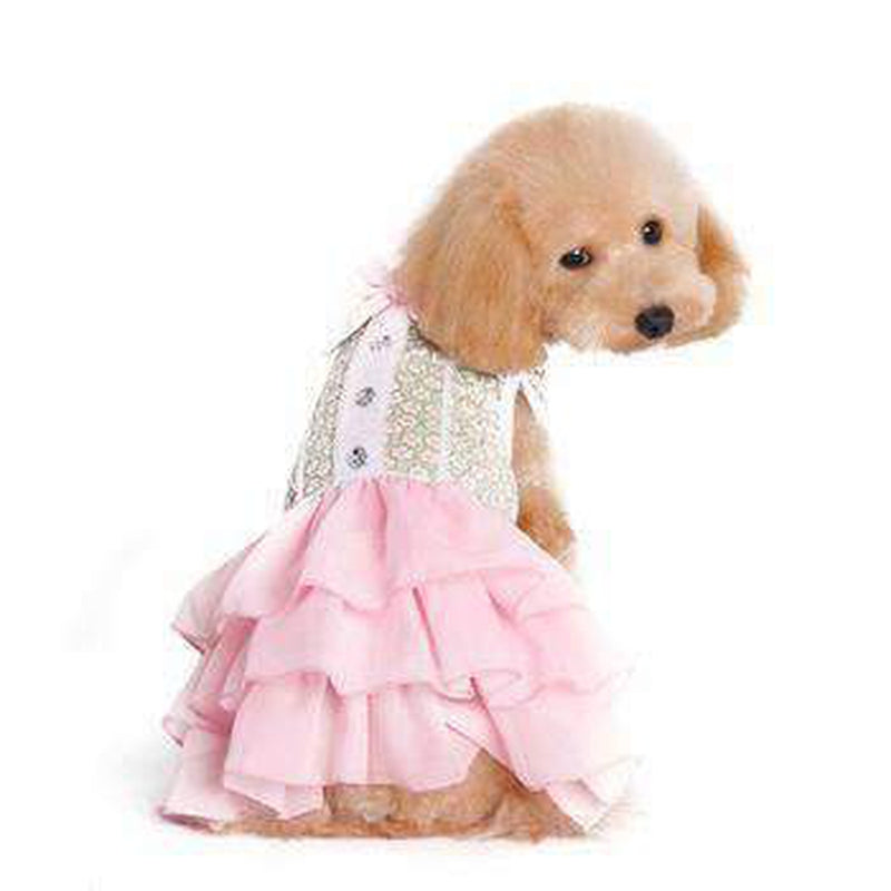 Gatsby Girl Dog Dress, Pet Clothes, Furbabeez, [tag]