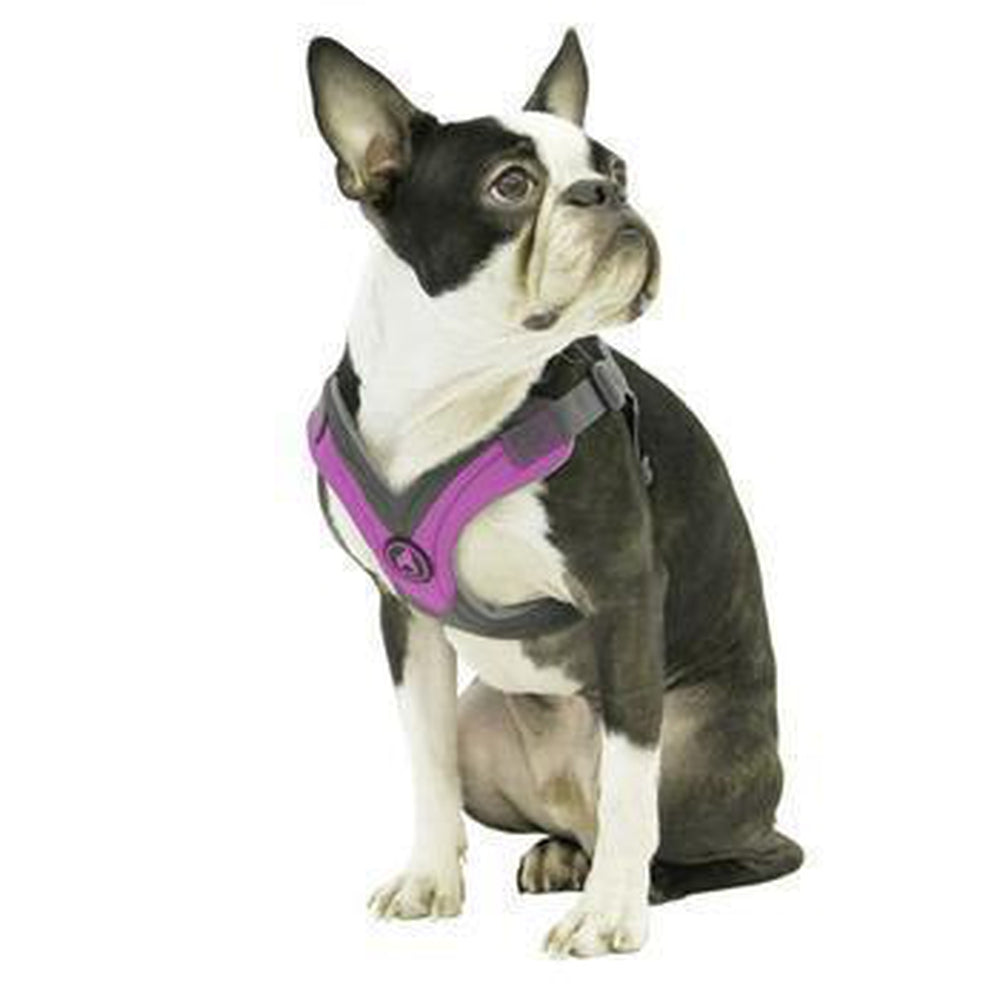 Gooby Trekking Step-in Memory Foam Dog Harness, Collars and Leads, Furbabeez, [tag]