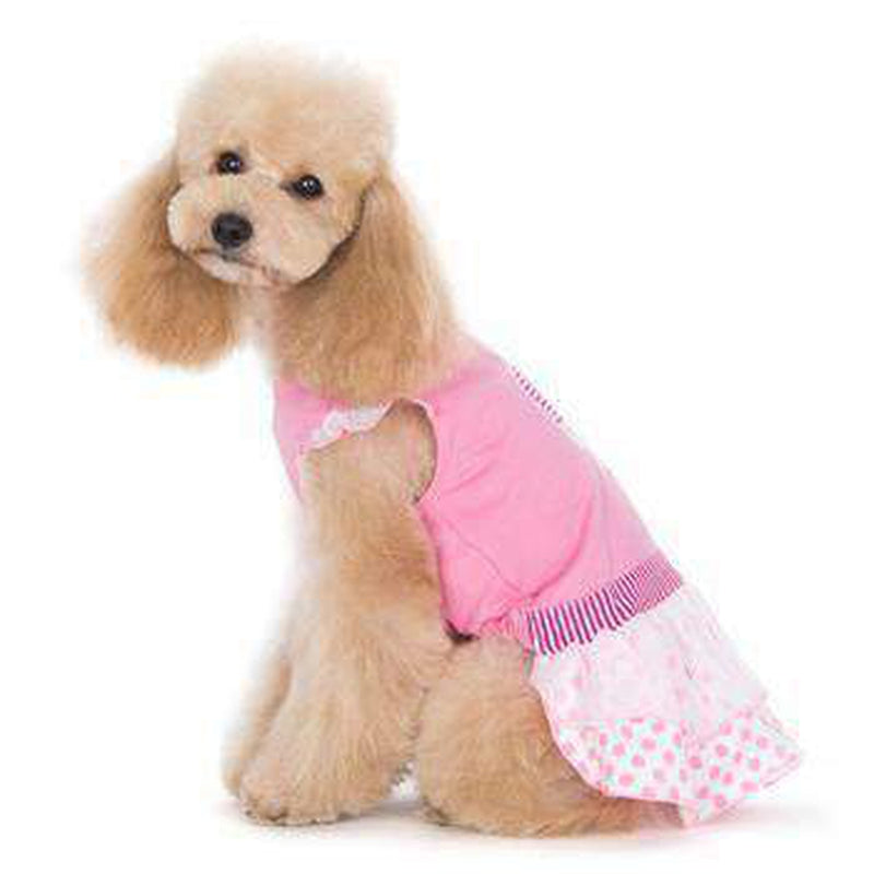 Ice Cream Dog Dress, Pet Clothes, Furbabeez, [tag]