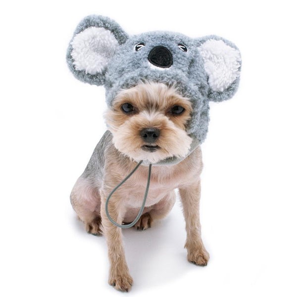 Koala Dog Hat Pet Accessories DOGO
