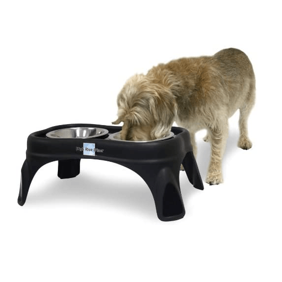 OurPet's Bone Feeder Black Pet Bowls OurPet's