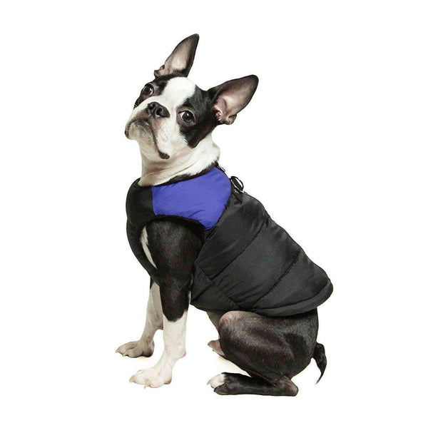 Padded Vest Dog Jacket by Gooby - Blue Pet Clothes Gooby Pet Fashions