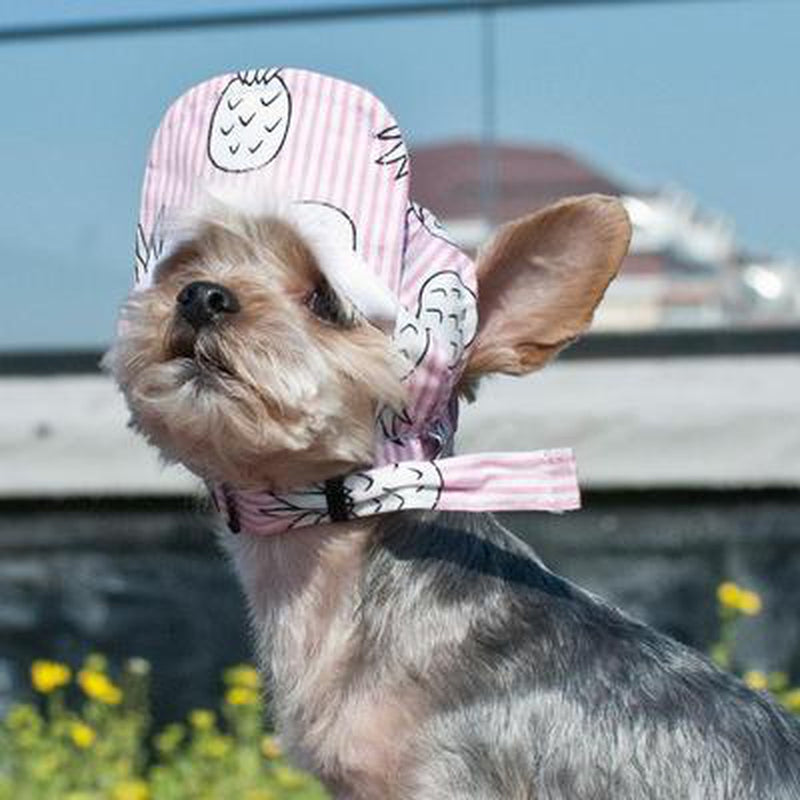 Pink Pineapple Dog Hat, Pet Accessories, Furbabeez, [tag]