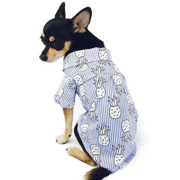 Pineapple Island Dog Shirt - Blue, Pet Clothes, Furbabeez, [tag]
