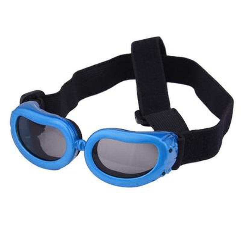 UV Dog Sunglasses Pet Accessories Oberlo Blue