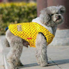 Polka Dot Warm Down Hoodie Pet Clothes Oberlo Yellow L