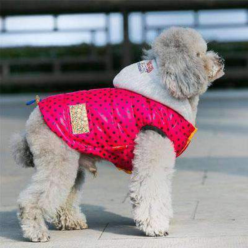 Polka Dot Warm Down Hoodie Pet Clothes Oberlo Pink L