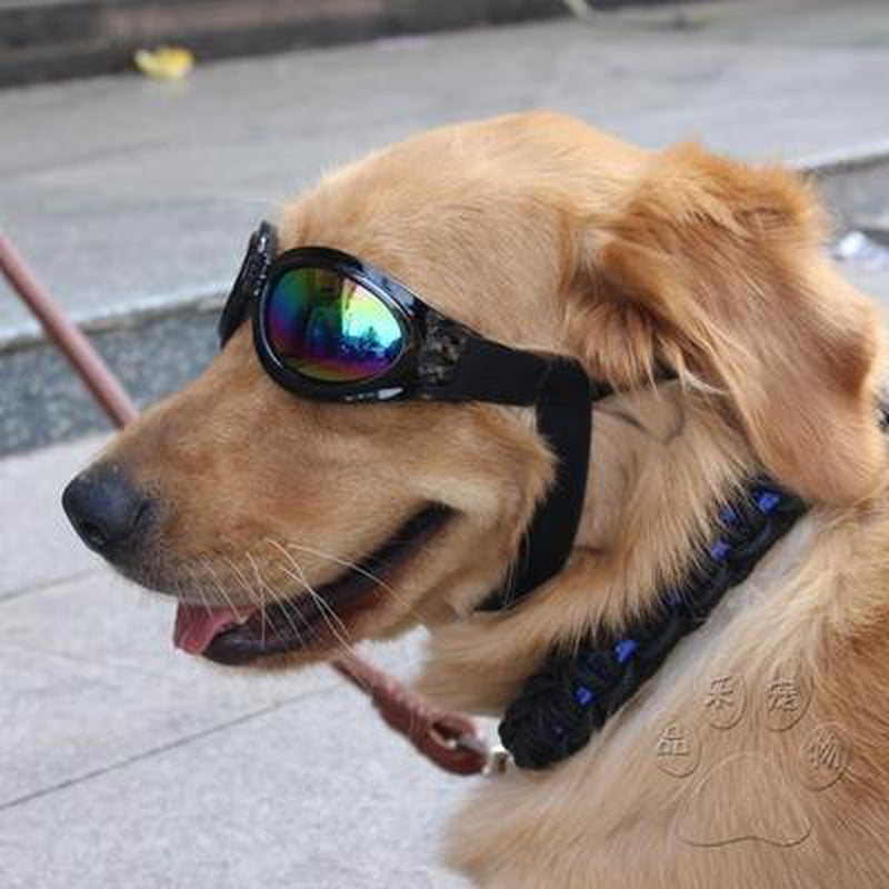 UV Protection Doggles Pet Accessories Oberlo US