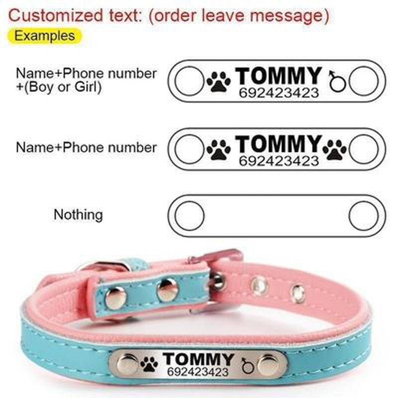 Engraved Leather Dog Collar, Collars and Leads, Furbabeez, [tag]