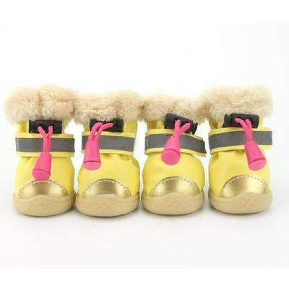 Waterproof Metallic Ugg Boots Pet Clothes Oberlo Yellow L