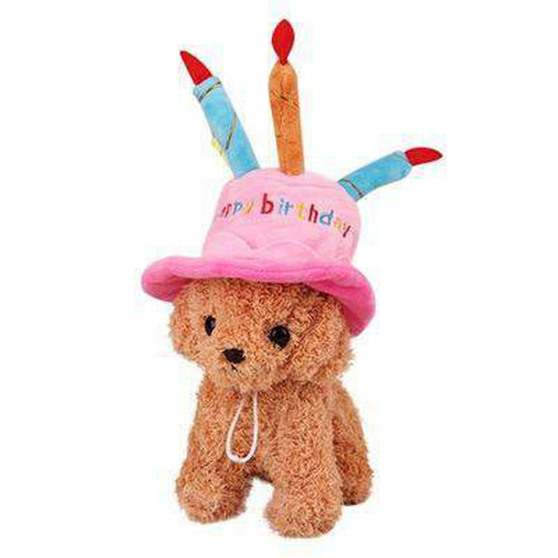 Dog Birthday Hat, Pet Accessories, Furbabeez, [tag]
