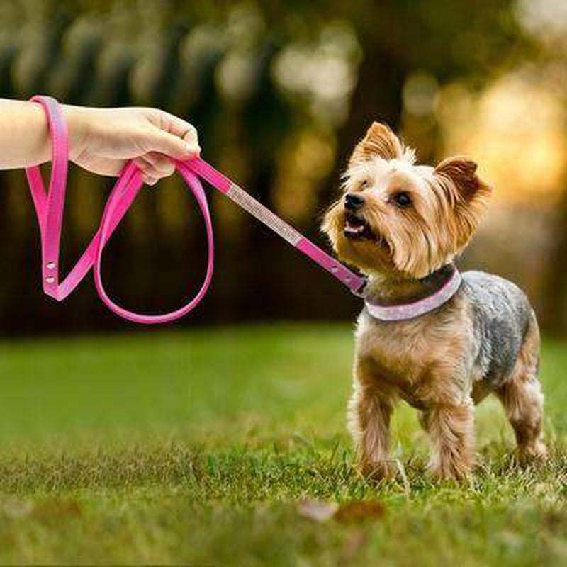Fashion Rhinestone Dog Leash, Collars and Leads, Furbabeez, [tag]