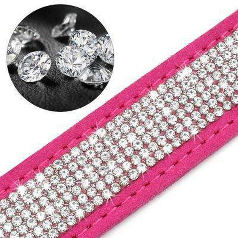 Rhinestone Engraved Dog Collar, Collars and Leads, Furbabeez, [tag]