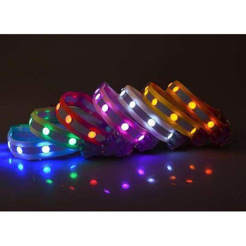 Flashing Gem Light LED Pet Dog Collar, Collars and Leads, Furbabeez, [tag]