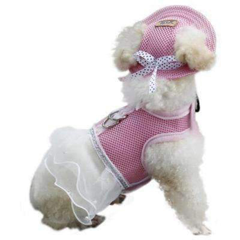 Fashion Dog Hats, Pet Accessories, Furbabeez, [tag]