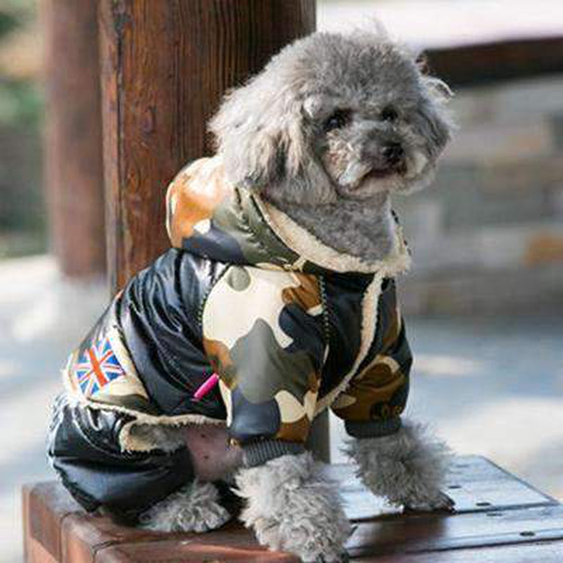 Waterproof Puffy Snowsuit Pet Clothes Oberlo Black S