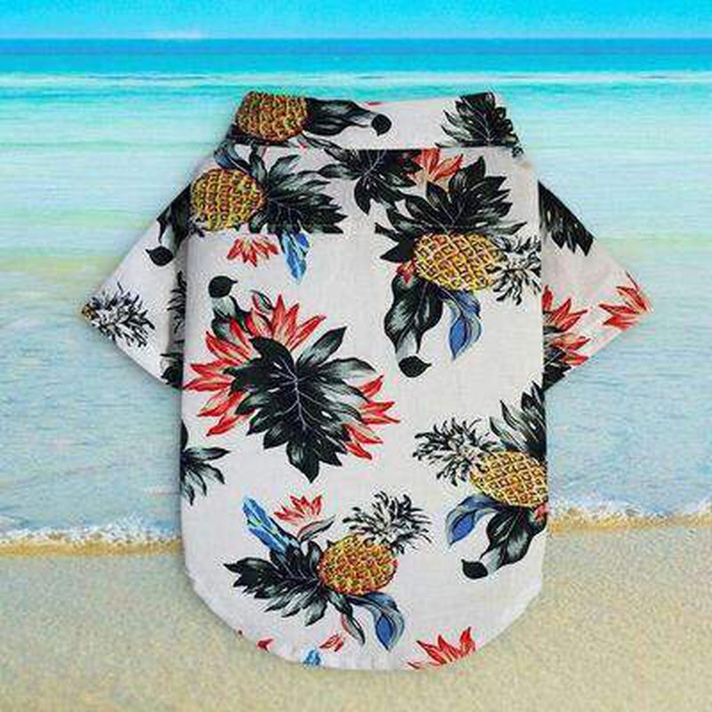 Pineapple Printed Beach Summer Shirt, Pet Clothes, Furbabeez, [tag]
