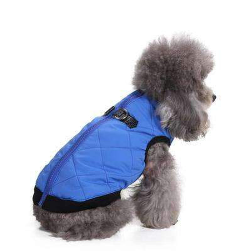 Two Tone Quilted Vest, Pet Clothes, Furbabeez, [tag]