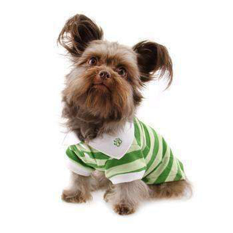 PuppyPAWer Stripe Dog Polo by Dogo - Green, Pet Clothes, Furbabeez, [tag]