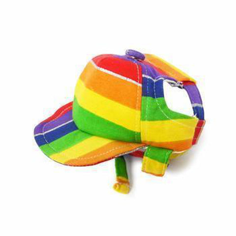 Rainbow Dog Hat