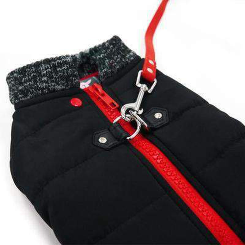 Runner Dog Coat - Black, Pet Clothes, Furbabeez, [tag]