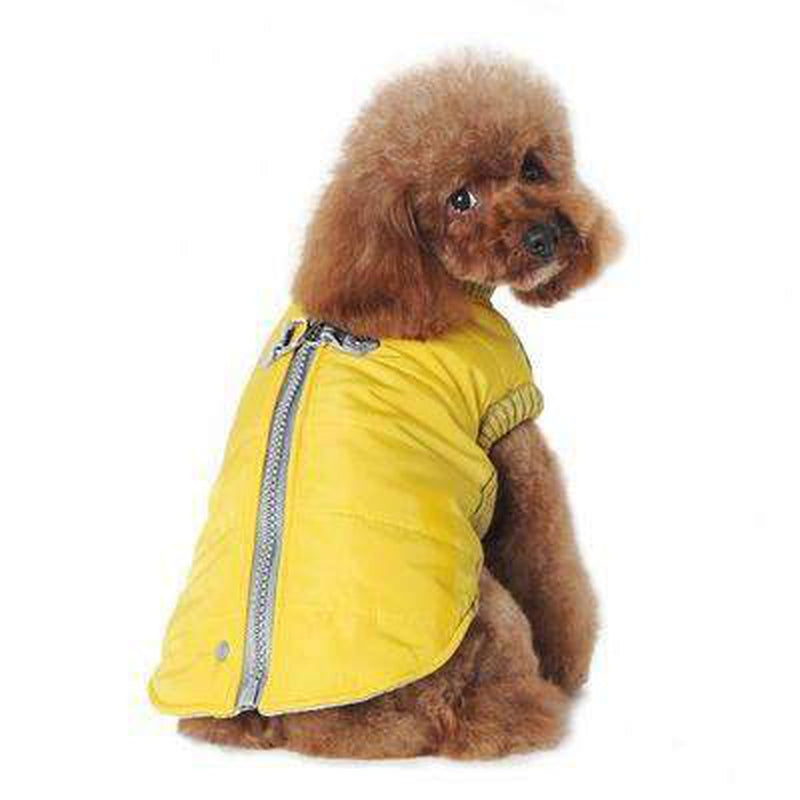 Runner Dog Coat - Yellow, Pet Clothes, Furbabeez, [tag]