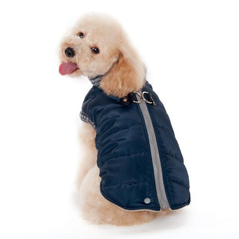 Runner Dog Coat - Navy Blue, Pet Clothes, Furbabeez, [tag]