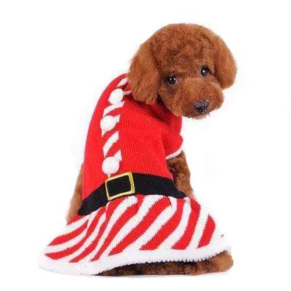 Santa Girl Sweater Dress Pet Clothes DOGO