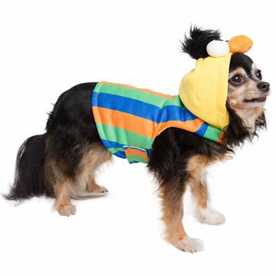 Sesame Street Bert Dog Pet Hoodie Costume Pet Clothes Pet Krewe