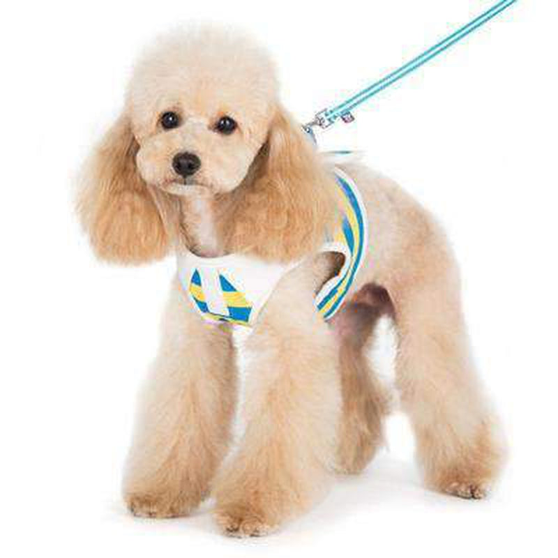 SnapGo Polo Boy Dog Harness by Dogo Collars and Leads DOGO