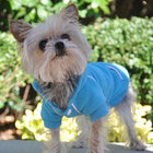 Sport Dog Hoodie by Doggie Design Pet Clothes Doggie Design