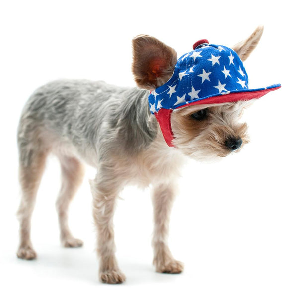 Stars American Dog Hat Pet Accessories DOGO