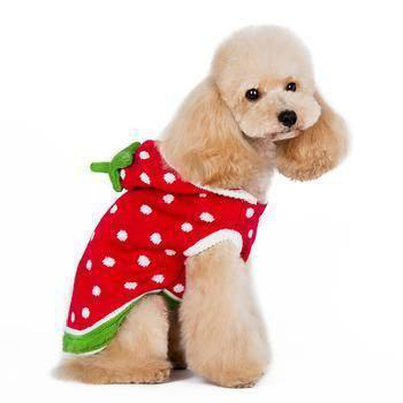 Strawberry Dog Sweater Pet Clothes DOGO