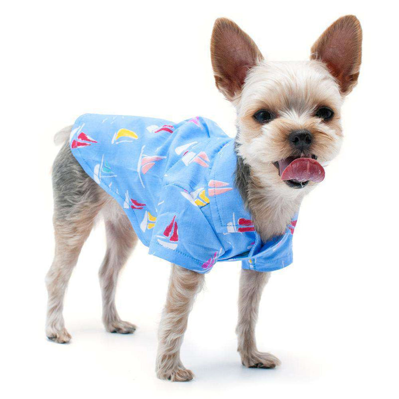 Summer Beach Dog Shirt, Pet Clothes, Furbabeez, [tag]